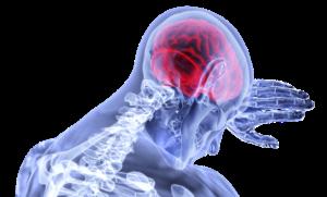 NLP Brain Power